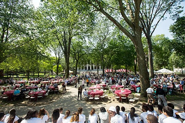 Hundreds of local senior citizens attended the 39th Annual Senior Picnic in Harvard Yard (photo 1). Welcoming the local residents was Christine Heenan, Harvard's vice president of public affairs and communications, and Cambridge Mayor David P. Maher (photo 2). Maher made the rounds as he stopped to speak to Mae Sullivan (photo 3).