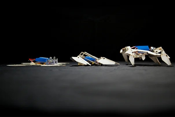 """""""Getting a robot to assemble itself autonomously and actually perform a function has been a milestone we've been chasing for many years,"""" said Robert J. Wood, Charles River Professor of Engineering and Applied Sciences at the Harvard School of Engineering and Applied Sciences (SEAS) and a core faculty member at the Wyss Institute for Biologically Inspired Engineering at Harvard."""