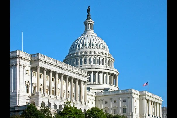 Forty-seven Harvard alumni will be part of the 114th Congress, which began this week.