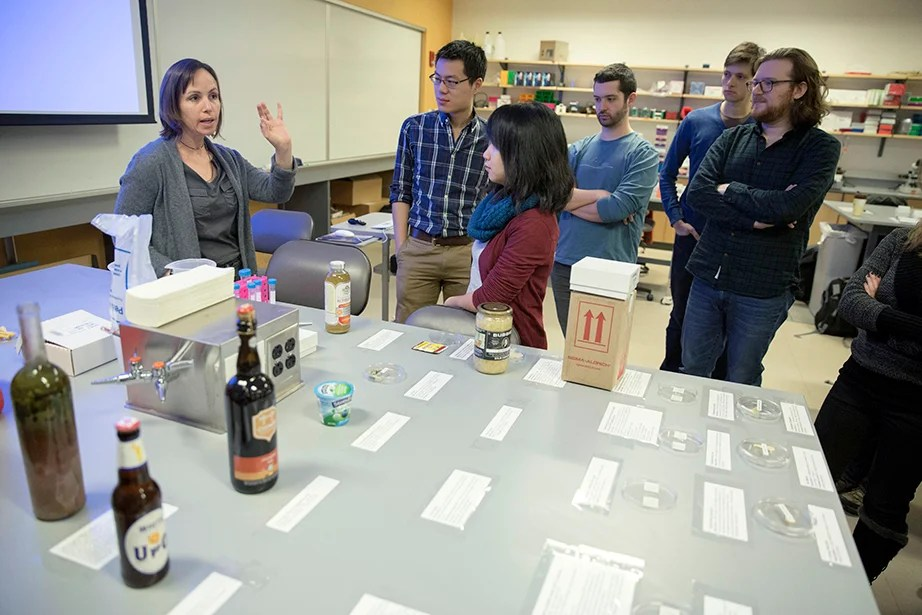 Postdoctoral student Einat Segev (from left) teaches GSAS students Allen Lin and Yolanda Huang during the MSI Graduate Consortium. Participants were given hands-on training in light, fluorescence, confocal, electron (TEM and SEM), and atomic-force microscopy. Kris Snibbe/Harvard Staff Photographer