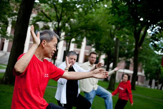 Tai chi lessons in Harvard Yard. File photo by Rose Lincoln/Harvard Staff Photographer