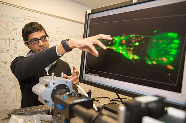 This powerful microscope was built by Vivek Venkatachalam (above), a postdoctoral fellow working in the lab of Professor of Physics Aravinthan Samuel in collaboration with fellow postdoc Ni Ji, Professor Mark Alkema of UMass Worcester, and Professor Mei Zhen, a former Radcliffe Fellow at the University of Toronto.