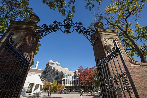 The members of the Harvard Class of 2020 have received their acceptance notifications. The College is admitting 2,037 applicants from a record pool of 39,041.