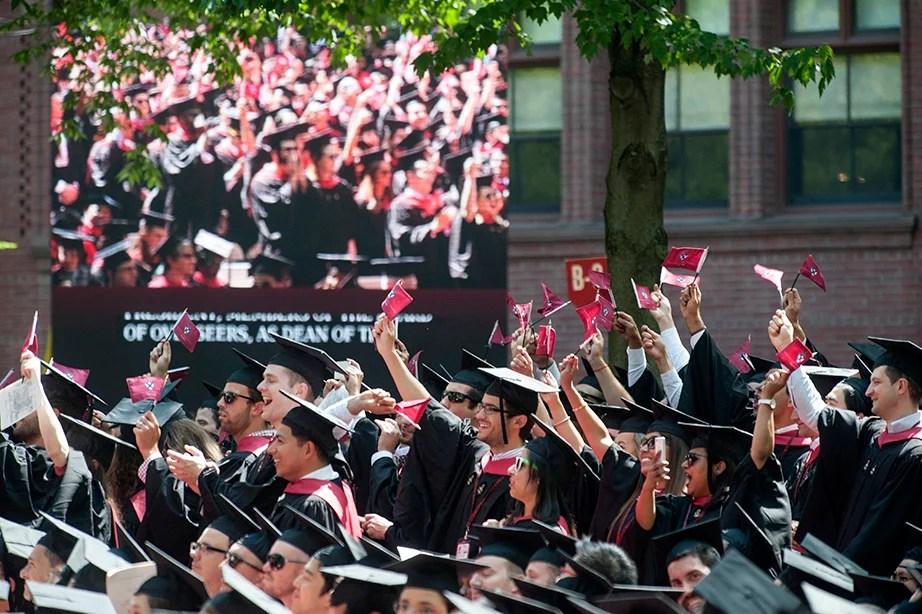 Harvard Law School graduates celebrate. Jon Chase/Harvard Staff Photographer