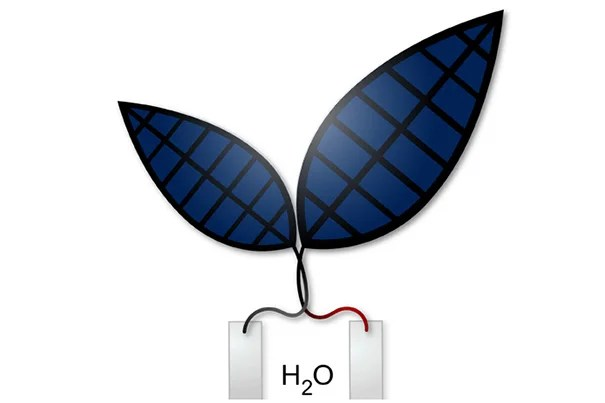 "A new ""bionic leaf"" system uses solar energy to produce liquid fuel."