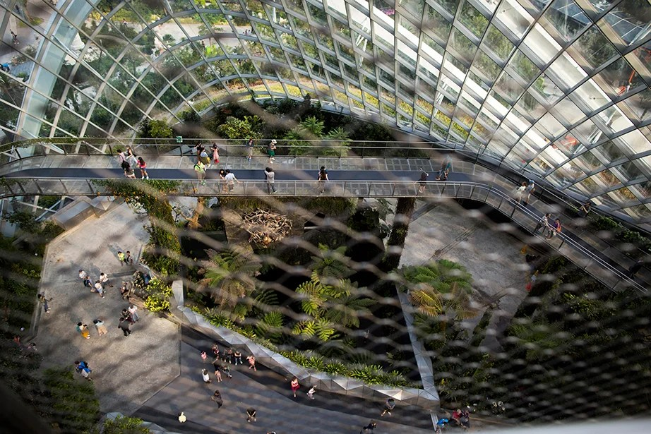 Visitors stroll along walkways that showcase plants and diverse vegetation from tropical highlands in the Cloud Forest of Gardens by the Bay in Singapore.