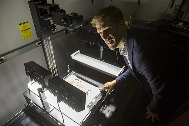 "Hundreds of new images from Thoreau's  collection of plant specimens will be available for viewing online. ""I think it's fair to say that the data that live inside these cabinets has been dark for far too long,""  said Charles Davis (pictured), director of the Harvard University Herbaria."