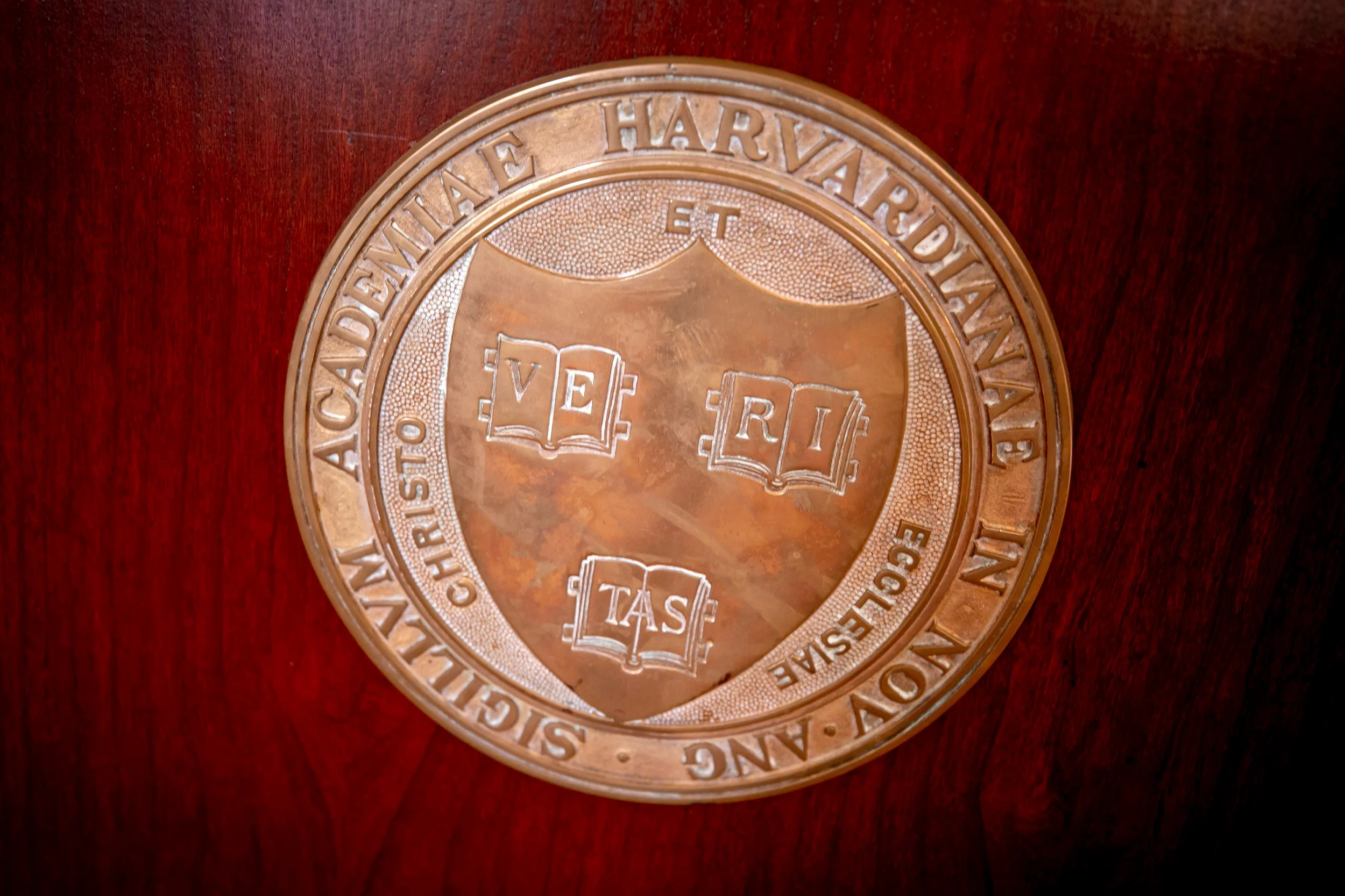 Robin Bernstein, Lawrence Bobo, George Lauder, Yukio Lippit, and Amy Wagers have been named Harvard College Professors.