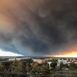 Harvard's Joe Allen explains health threat in Calif. wildfire smoke