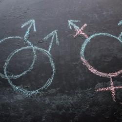 $1.5M gift kick-starts sexual, gender minority health equity initiative
