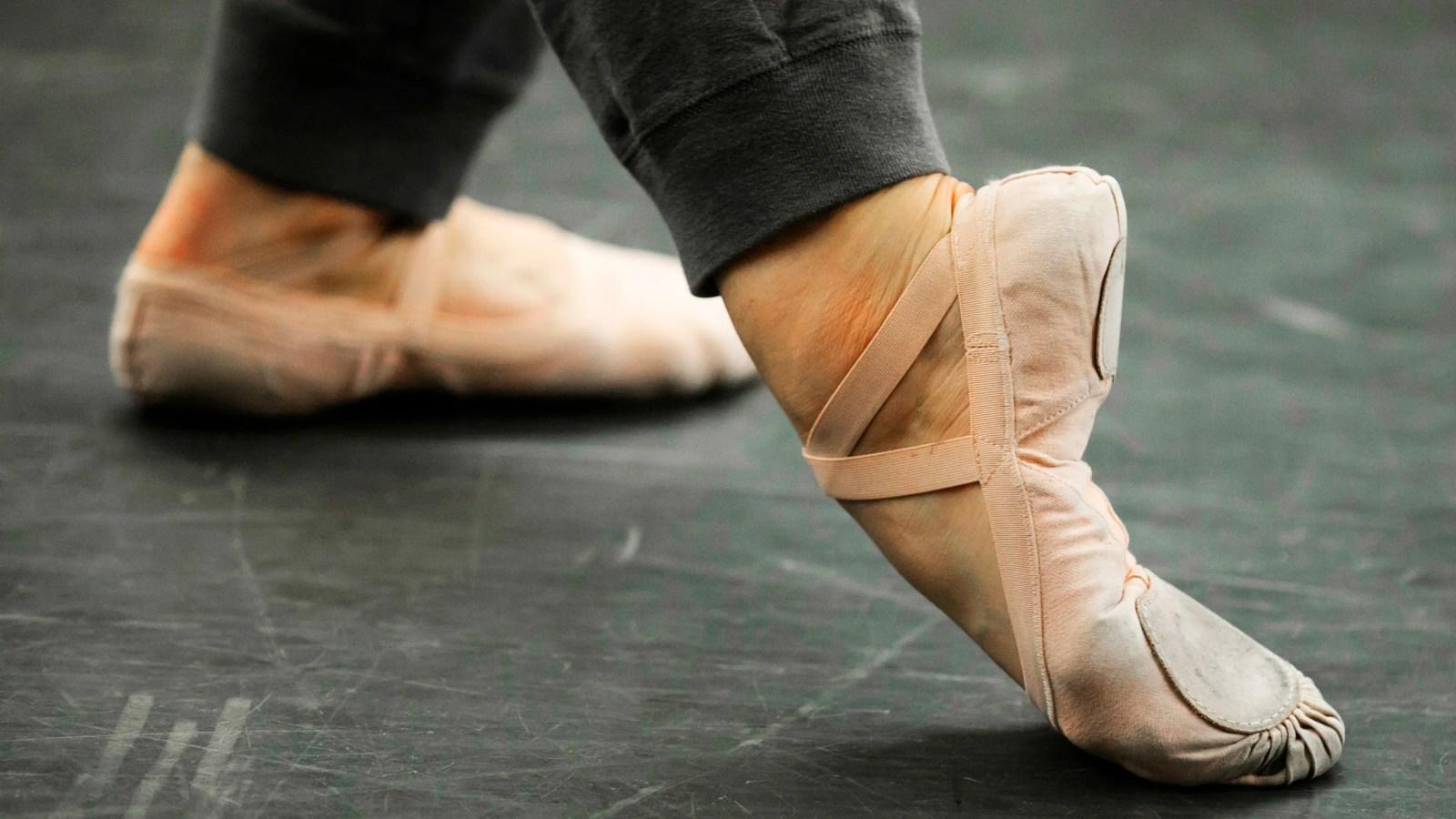 photo gallery harvard ballet