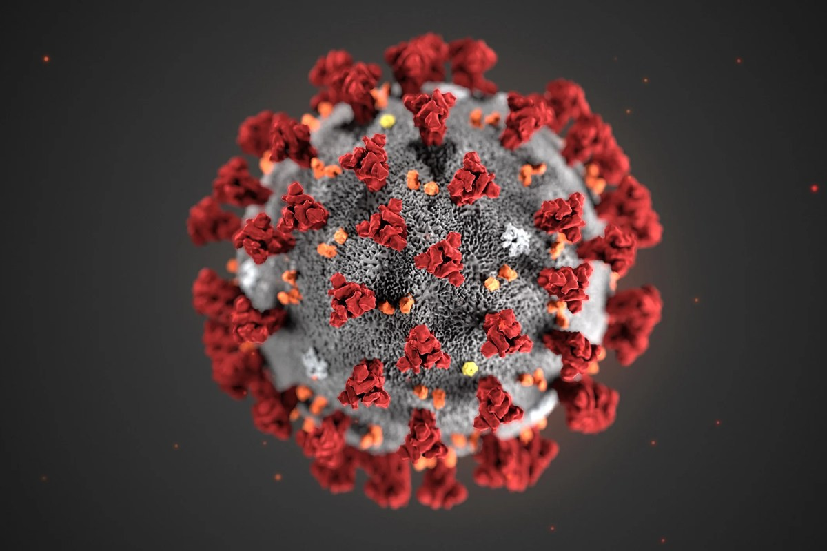 As confirmed cases of coronavirus surge, path grows uncertain ...