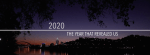 """""""2020: The Year That Revealed Us"""" from the Cincinnati Enquirer"""