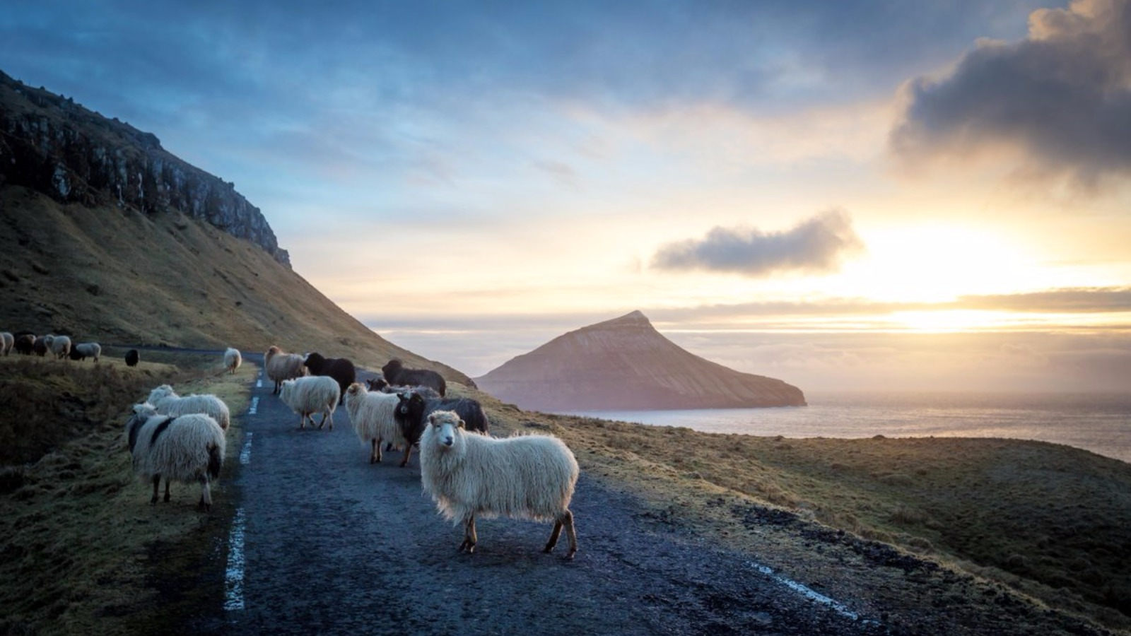 Panoramic Wallpaper Fall Faroe Islands Use Sheep Cameras To Create Google Street