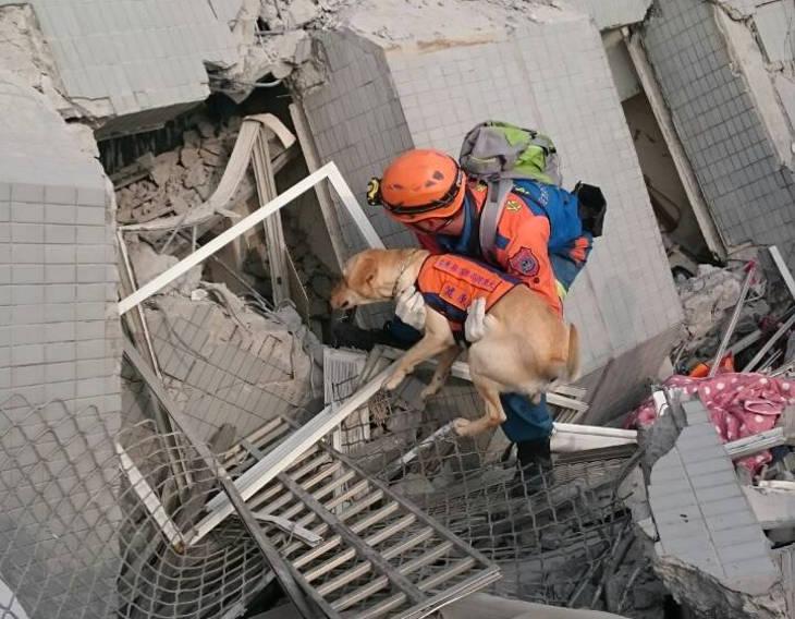 На Тайване нашли причину обрушения высоток во время землетрясения