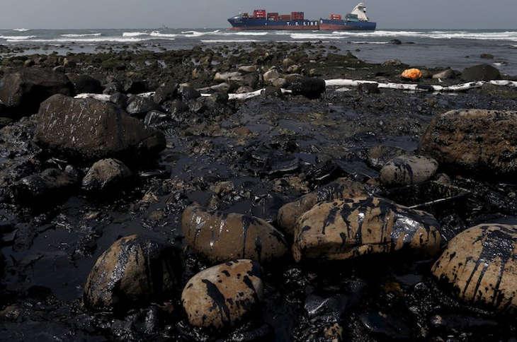 Тайваньским спасателям не удалось предотвратить утечку мазута в море