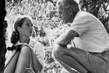 Remembering My Mentor : Robert Hinde