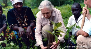 Dr. Goodall Speaks About Threats to Biodiversity Following U.N. Report