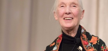 Dr. Jane Goodall's Thoughts for First World Chimpanzee Day