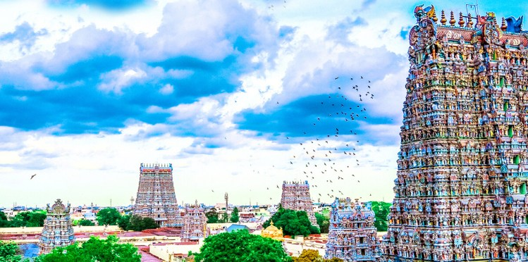 Madurai lotus city