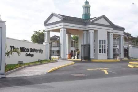 University in Jamaica | College in Jamaica