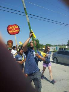 Landau joins the Coalition of Immokalee Workers 200 mile walk across Florida in 2013 to demand that Publix sign the Fair Food Agreement.