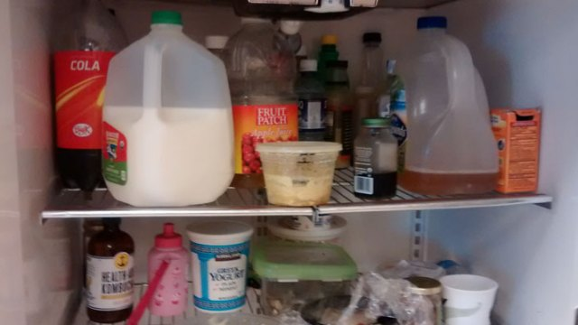 Food Borne Illness