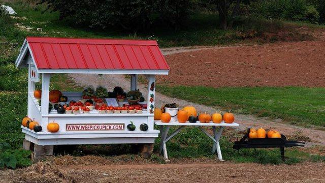 roadside farm stand