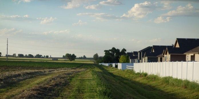 Development in Mead