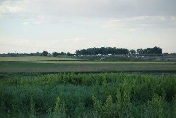 Peppler Fields