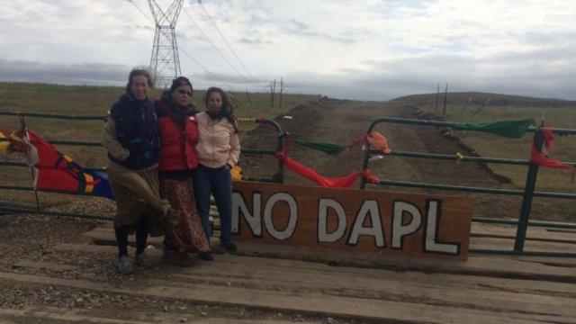 No DAPL