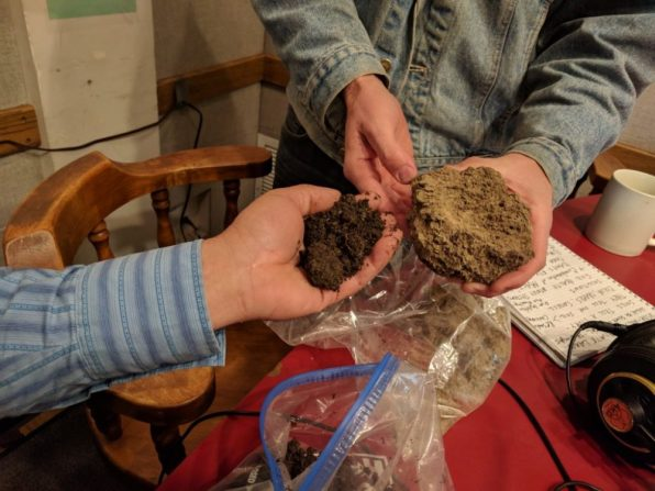 The soil on the left is healthy and fertile after a regenerative process