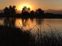 Susnset on Pond