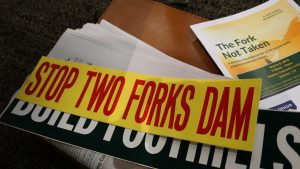 Two-Forks-Stickers-300×169