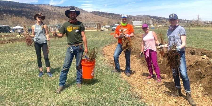 Local Farm Launches Compost Project and Plants Trees to Regenerate Soil Health