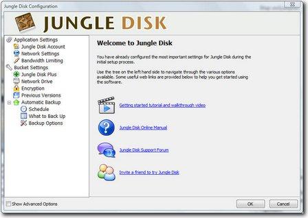 jungledisk 1