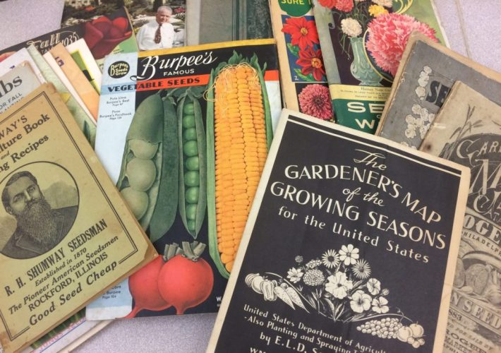 Colorful assortment of seed catalogs