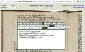 An example of a transcription in progress. Photo Credit: EMPOP