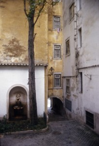 A corner of a courtyard with a tree, branching near the top of the frame, rooted in a small patch of greenery in front of an arched door in a building. Next to the door is an archway out of the courtyard.