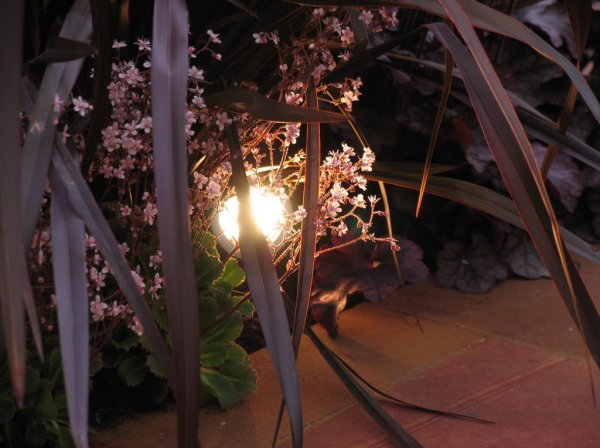 Landscape Lighting at Home