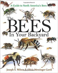 Image of Bees in Your Backyard book cover