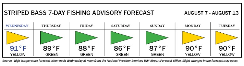 Image of Striped Bass Fishing Advisory Forecast, showing yellow flag days on Wednesday, Monday and Tuesday; and green flag days on Thursday, Friday, Saturday, and Sunday