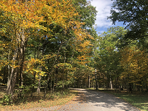 Photo of Rocky Gap State Park Campground loop