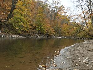 Big Elk Creek in Fair Hill NRMA, photo by Diana Marsteller