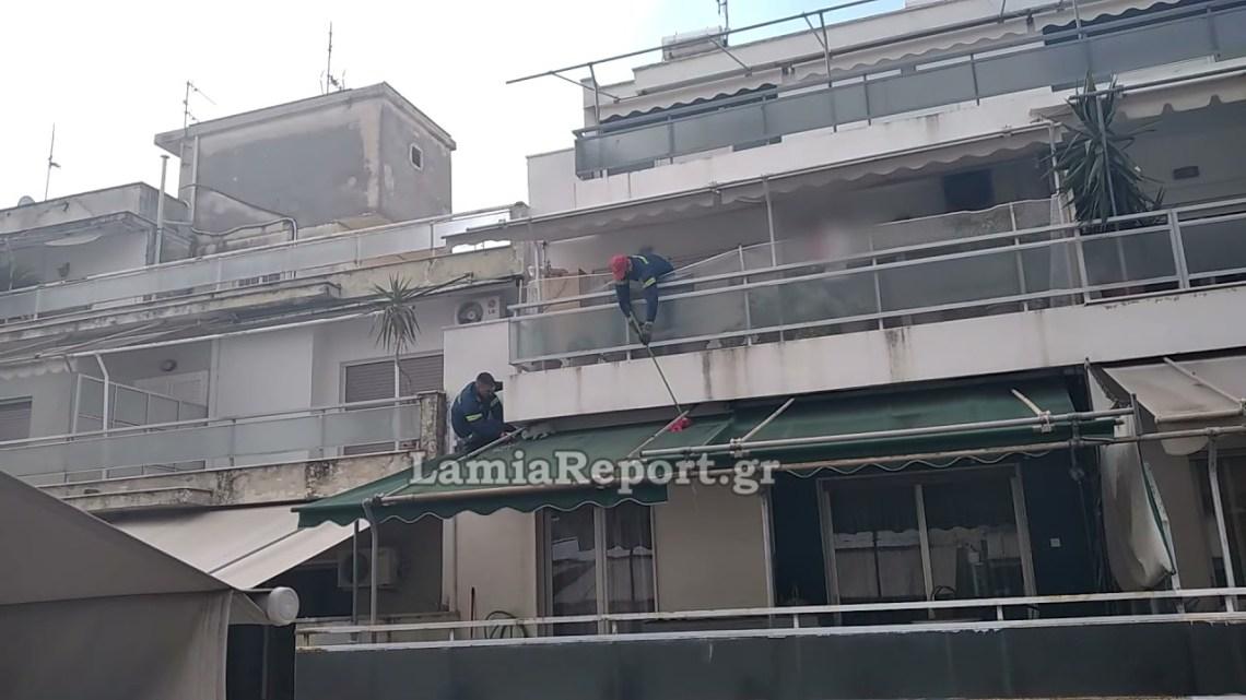 LamiaReport.gr: Έσωσαν το άτακτο κουνέλι