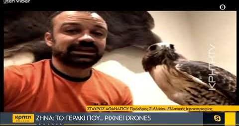 Ζήνα: Το γεράκι που ρίχνει drones!