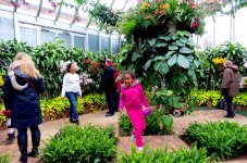 Two children play amid the beauty of the Orchid Show.