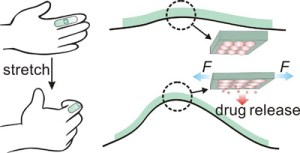 NC State researchers create a stretchable drug delivery mechanism.