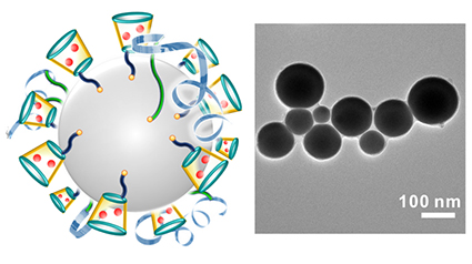 On left is a schematic illustration of liquid-metal 'nano-terminators.' The red spheres are Dox. At right is a representative TEM image of liquid-metal nano-terminators. Image credit: Yue Lu. Click to enlarge.