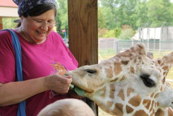 image of Susan feeding a giraffe